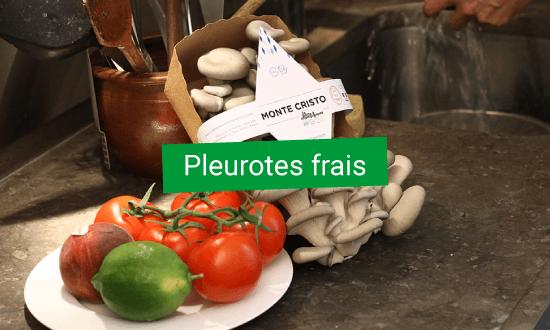 Pleurotes frais cultivés à partir de marc de café