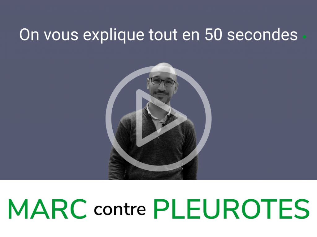 Video marc contre pleurotes