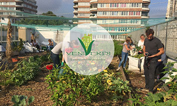veni verdi, solution de compostage par UpCycle