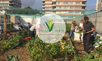 veni verdi, solution de compostage par UpCycle