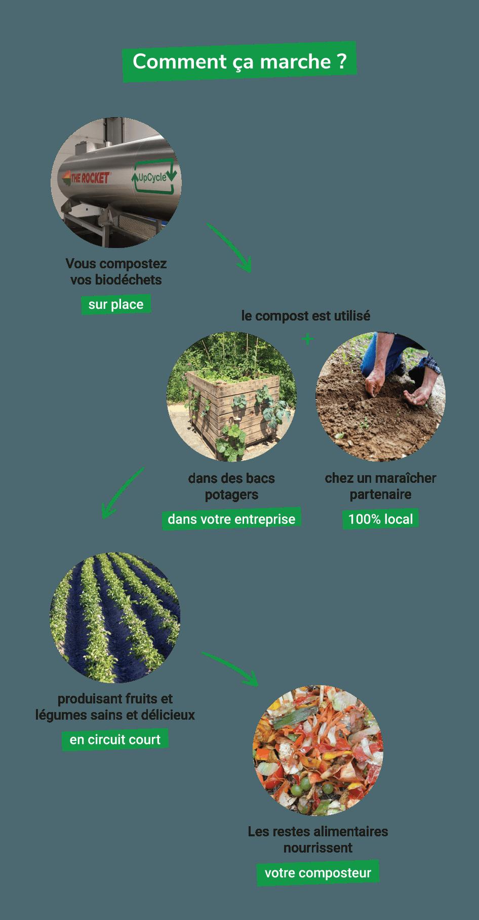 Utilisation du compost d'UpCycle