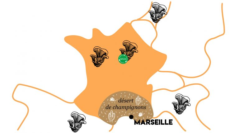 Carte UpCycle Champignons de Marseille