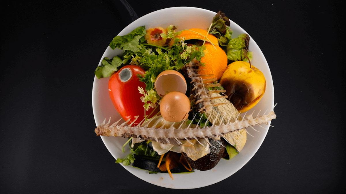 biodechets assiette