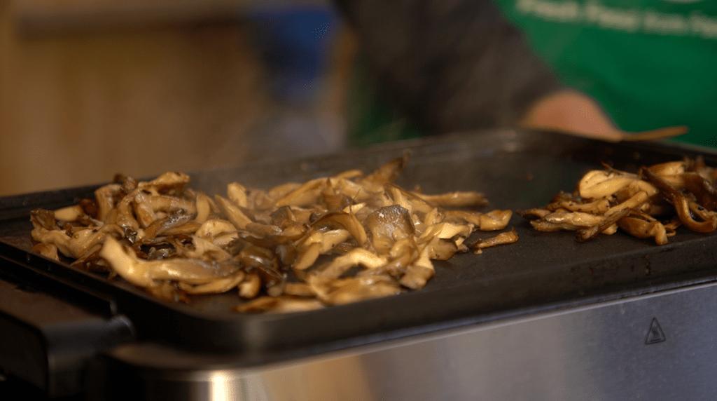UPCYCLE Dégustation de pleurotes cultivés sur marc de café