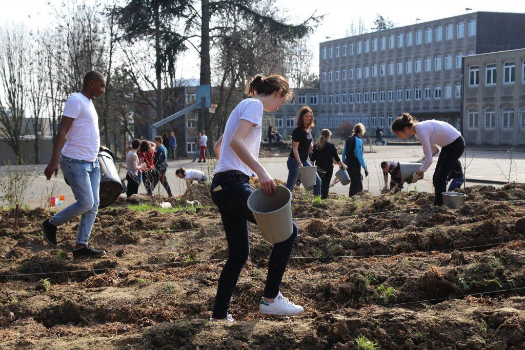 Veni Verdi cree des jardins dans etablissements scolaires