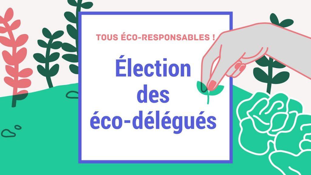 élection éco-délégués