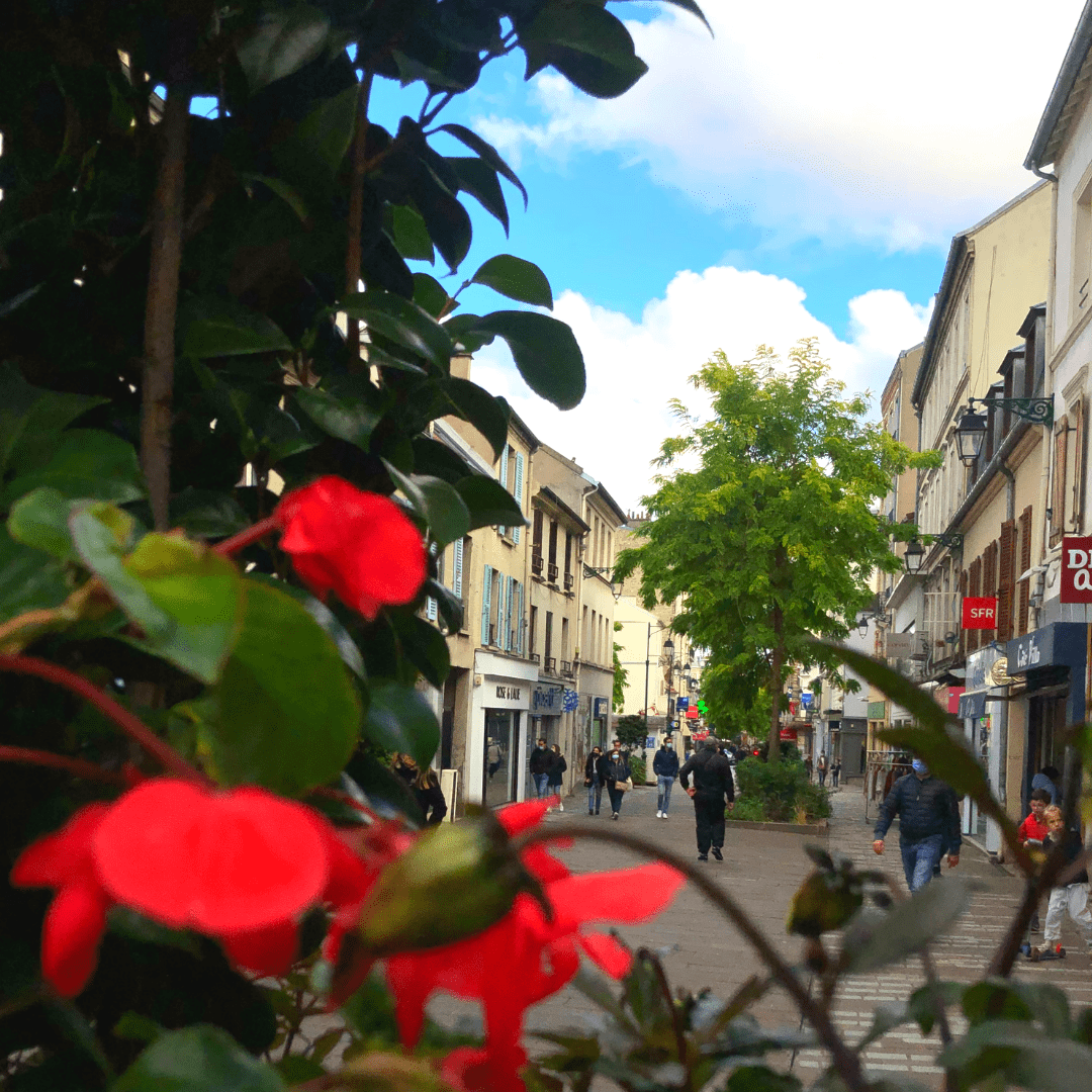 Ville du 1_4 d'heure-rue pietonne-region parisienne2