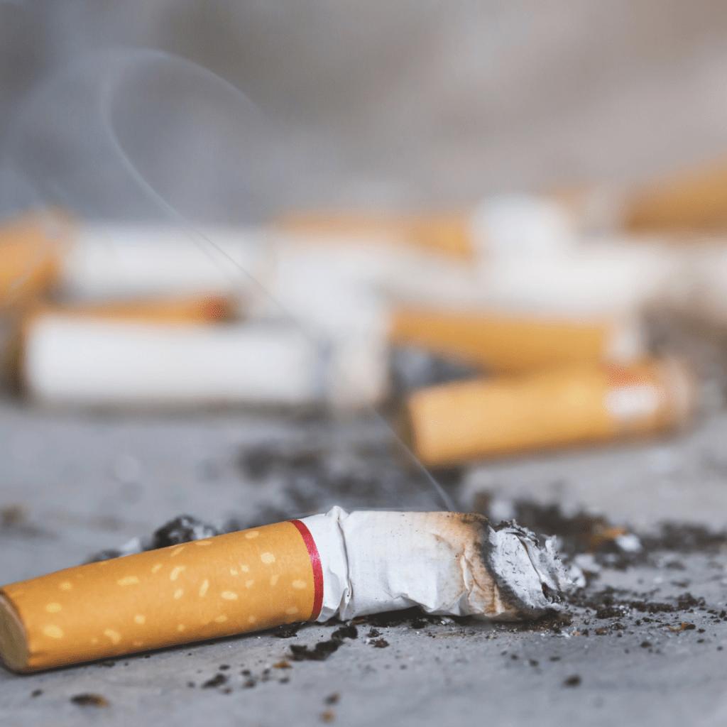 composter le tabac des mégots de cigarettes | UpCycle
