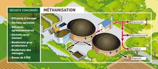 Schéma Méthanisation - déchets concernés. Source : ADEME