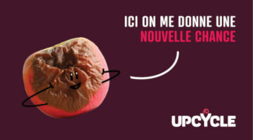 accompagnement com upcycle