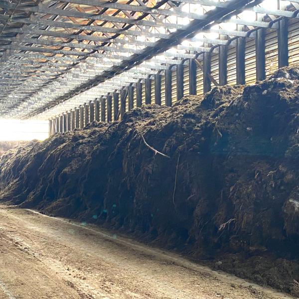 Compostage plateforme-.aeration forcee-compostage en casier-aération par le sol